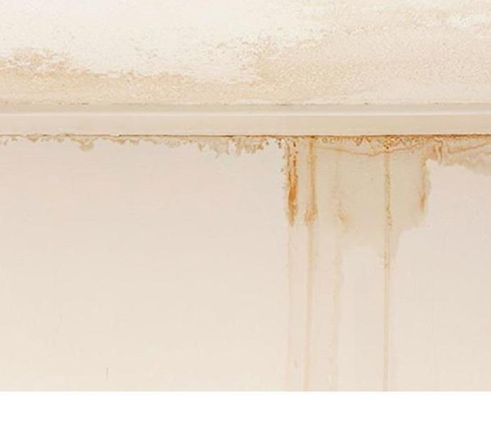 Water Damage What To Do About A Leaky Ceiling