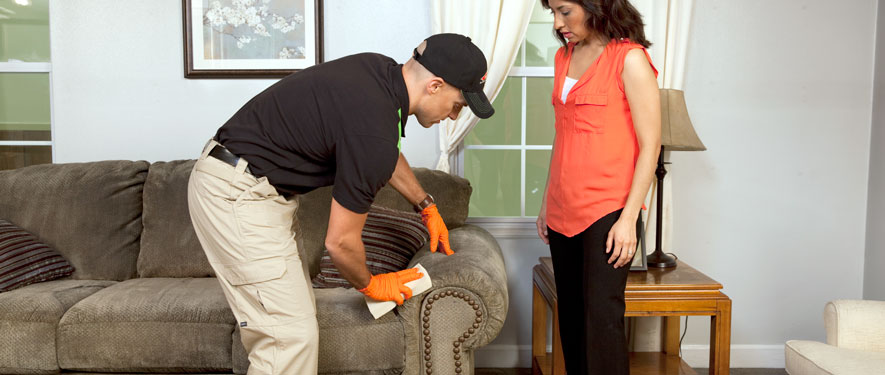 Manassas, VA carpet upholstery cleaning